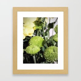 Baby Greens Framed Art Print