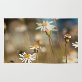 Field of Daisies - Floral Photography #Society6 Rug