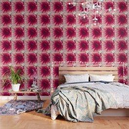 Pink Dahlia Wallpaper
