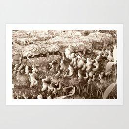fungus among us Art Print
