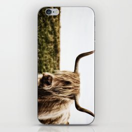 Highland Cow - color iPhone Skin