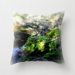 Billabong Throw Pillow