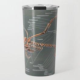 Gryphon Skeleton Anatomy Travel Mug