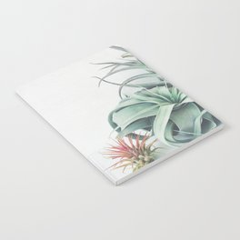 Air Plant Collection Notebook