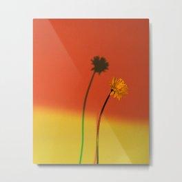 Flower and Shadow Metal Print