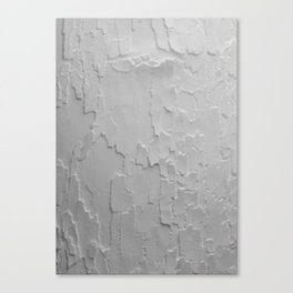 Rythm 10 Canvas Print