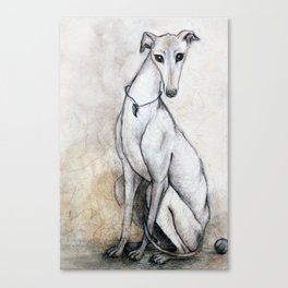 The Greyhound Wearing His Thorn Canvas Print