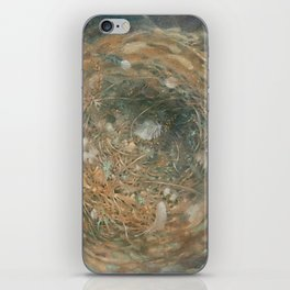 Nest and Feathers iPhone Skin