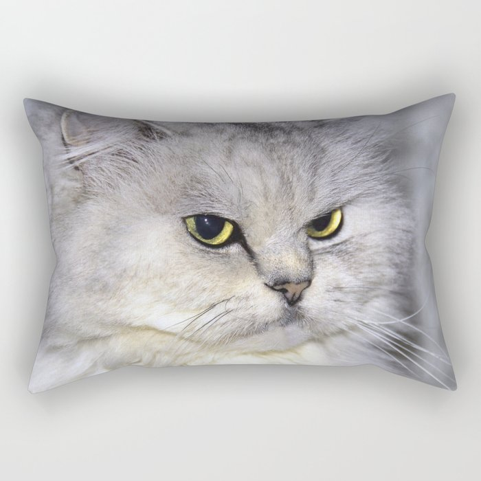 Mr Shelby Rectangular Pillow