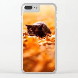 Autumn cat Clear iPhone Case