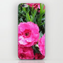 Pink cloves iPhone Skin