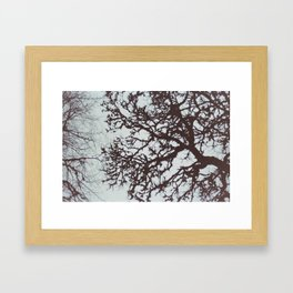 Vascular  Framed Art Print