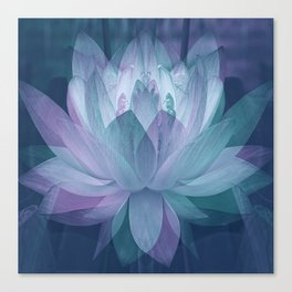 Softly... Canvas Print