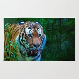 The tiger, king of the jungle Rug