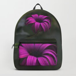 Has been a long day (African Daisy Flower) Backpack
