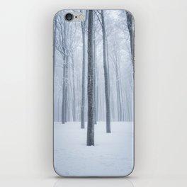 Foggy frozen winter forest iPhone Skin