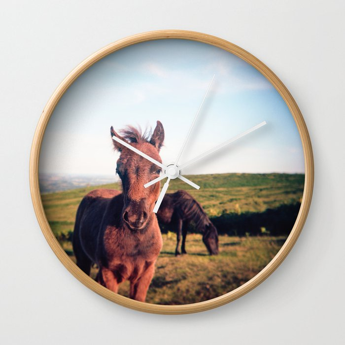 Dartmoor Pony Portrait (2) Wall Clock