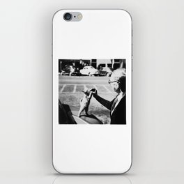 The Cat's Meow iPhone Skin