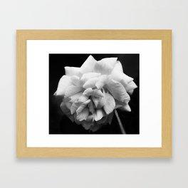 Full Flower Framed Art Print