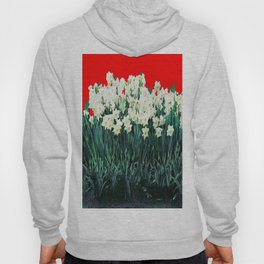 Red Whites Daffodils/Narcisus Spring Blue-Green Garden Hoody