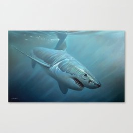 Beyond The Break Canvas Print