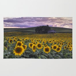 Summertime Sunflowers Rug