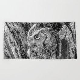 Echo the Screech Owl by Teresa Thompson Beach Towel