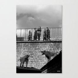 Tower Monkeys Canvas Print