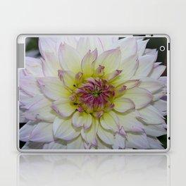 Dahlia Pastel Tones Laptop & iPad Skin