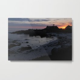 Sunrise Seals on the Beach Metal Print