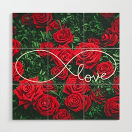 Red Roses Photography & Infinity Love Sign Wood Wall Art