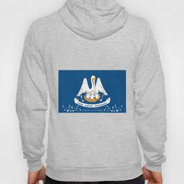 Musical Louisiana State Flag Hoody