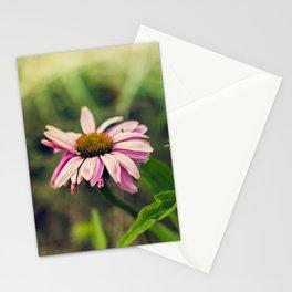 Daisy V Stationery Cards