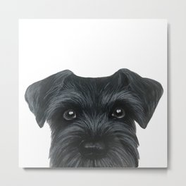 Black Schnauzer, Dog illustration original painting print Metal Print
