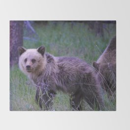 Grizzly bear cub in Jasper National Park | Alberta Throw Blanket