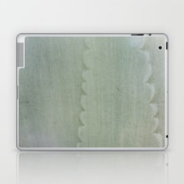 Agave Aglow Laptop & iPad Skin