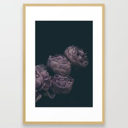 Dramatic Bunch of Peonies | Modern Floral Photography | Nature Framed Art Print