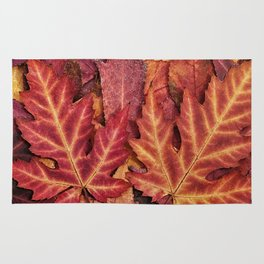 Colorful Autumn Maple Leaf Indian Summer Red Rug