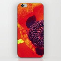 Let's Pop iPhone & iPod Skin