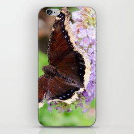 Butterflies 2 iPhone Skin