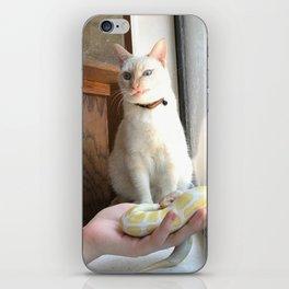 Cat No Banana Snek iPhone Skin
