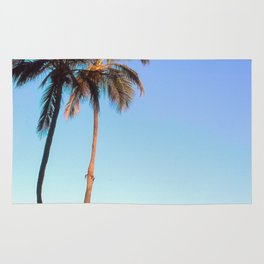 Florida Palm Trees and Blue Sky Rug