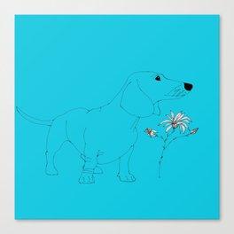 Blue Dachsund Love Canvas Print