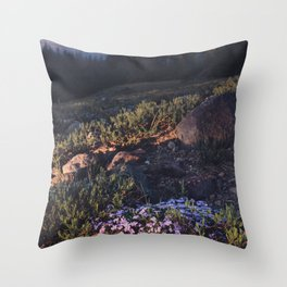 Wildflowers at Dawn - Nature Photography Throw Pillow