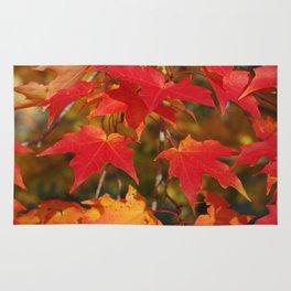 Fiery Autumn Maple Leaves 4966 Rug