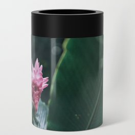 Tropical Pink Can Cooler
