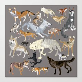 Wolves of the world 1 Canvas Print