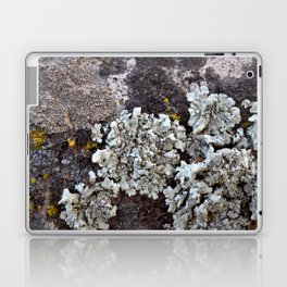 Smattering of Lichens Laptop & iPad Skin