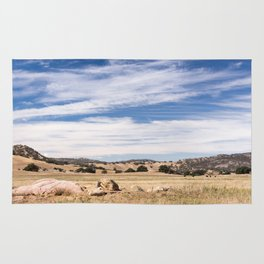 Dry meadows and rolling hills near Julian, CA Rug