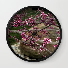 Eastern Redbud Branch Wall Clock